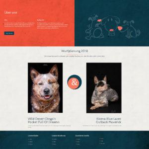 Webdesign und Programmierung Wild Desert Dingos von Divinci in Schweinfurt